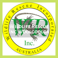 Wildlife Rescue Woolgoolga